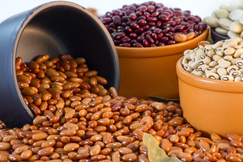 Różne rodzaje fasoli należących do roślin strączkowych.