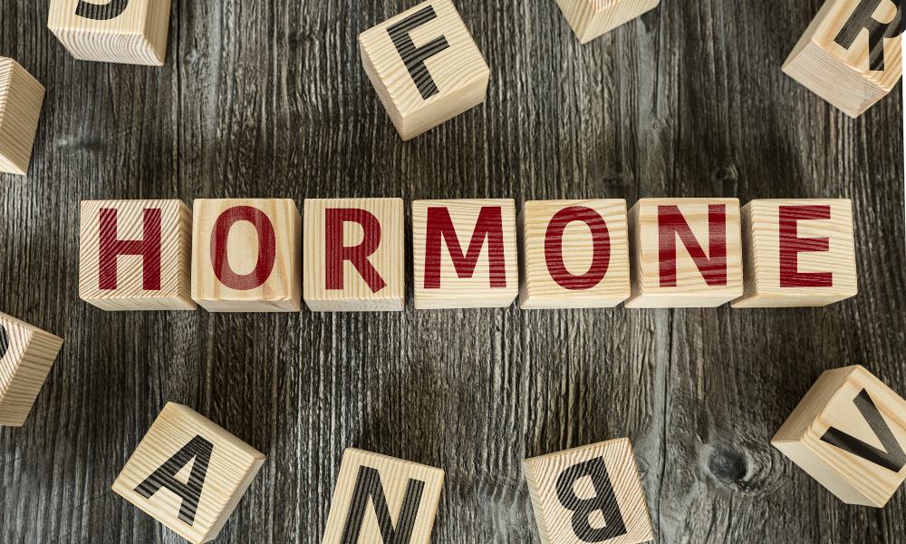 Hormony obniżają zapotrzebowanie energetyczne, lelcia.pl