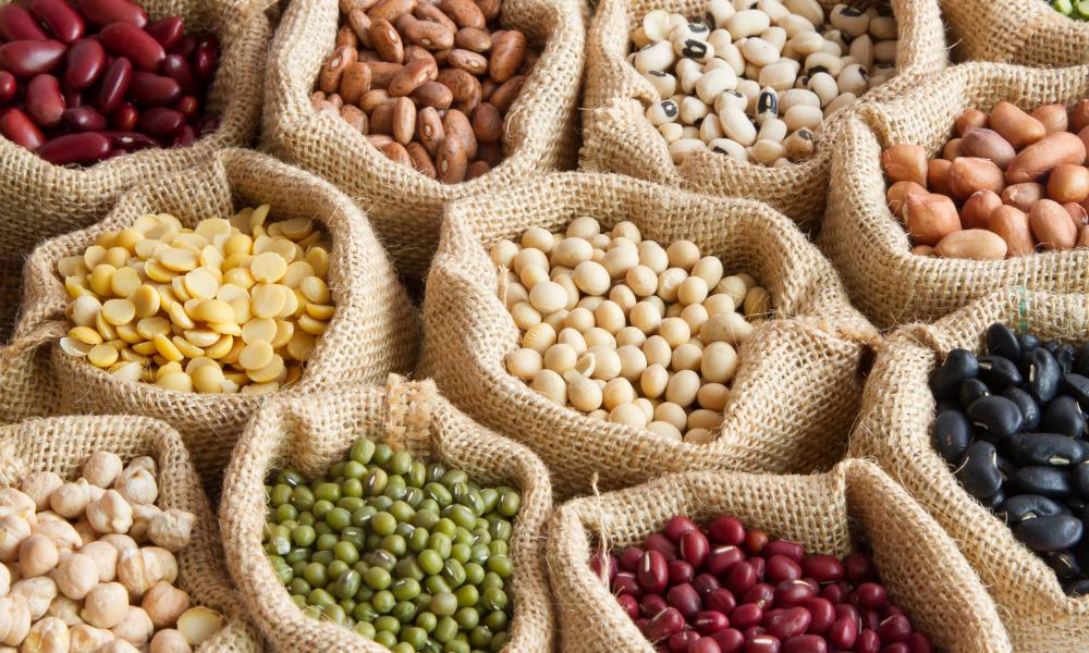 Strączki to główne źródło białka i składników odżywczych w diecie wegan, lelcia.pl